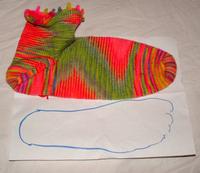 Sock_pal_sock_02_102007