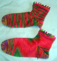 Sock_pal_socks_112007